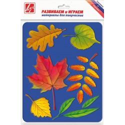 """Трафарет-раскраска """"Листья деревьев"""", Луч"""