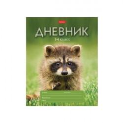 "Дневник 1-4 кл. 48л ""Енотик"", скрепка, HATBER"