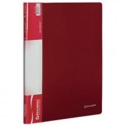Папка 10 файлов красная, 0.5 мм
