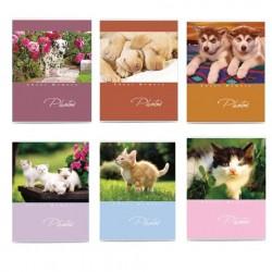 Фотоальбом на 36 фото 10*15 см, мягкая обложка, Котята/Щенки, ассорти