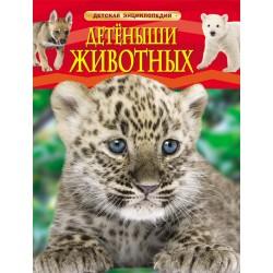 Детская энциклопедия А-4 Детеныши животных