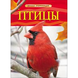 Детская энциклопедия А-4 Птицы