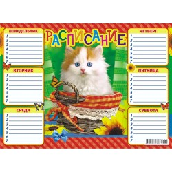 Расписание уроков А-4 Кошки