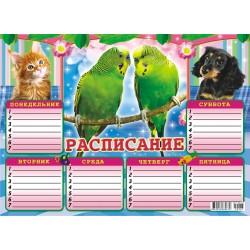 Расписание уроков А-4 Попугаи