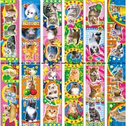 Закладки магнитные Кошки