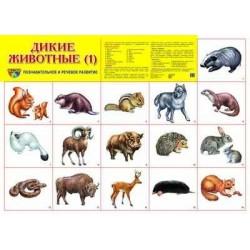 Демонстрационный плакат Дикие животные-1