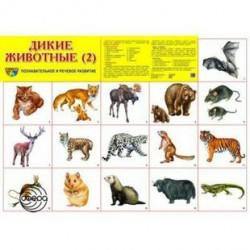Демонстрационный плакат Дикие животные-2