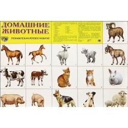 Демонстрационный плакат Домашние животные
